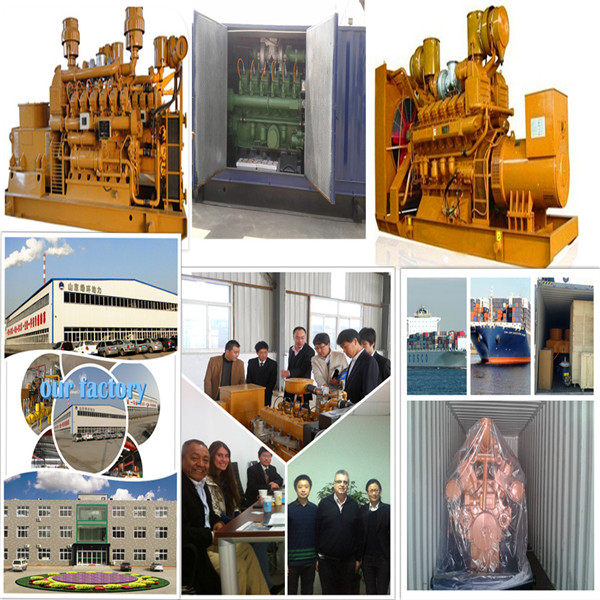 Best Biomass Gas Generator Price Wood Pellet Generator Wood Gas Generator for Sale