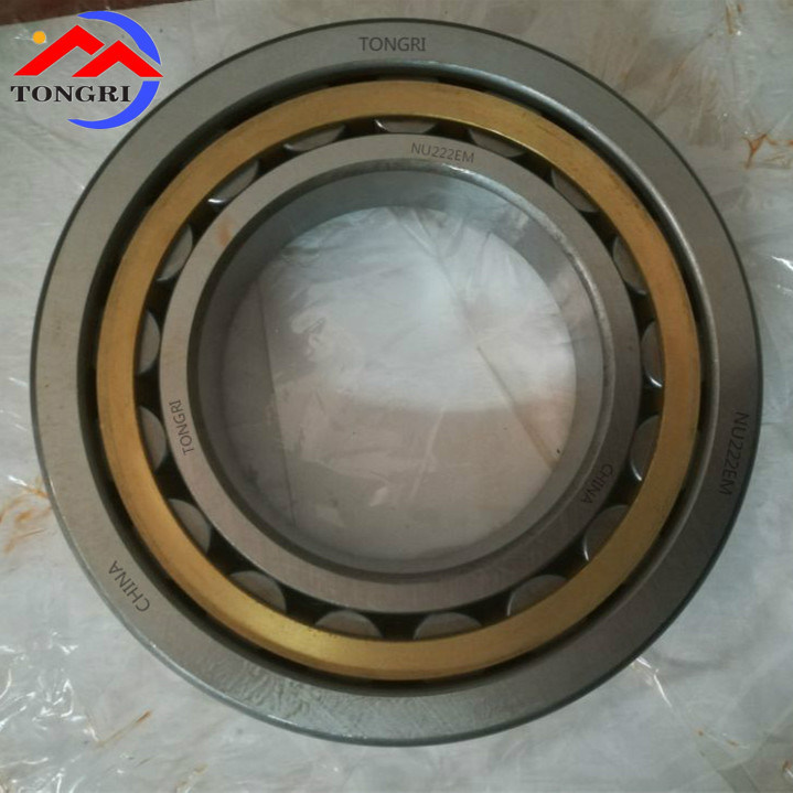 High Quality / Waterproof/ Dustproof/ Cylindrical Roller Bearings