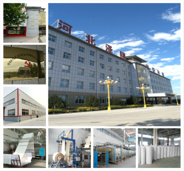 Lower Price Fusible Interlining Non Woven 80GSM Pes Coating