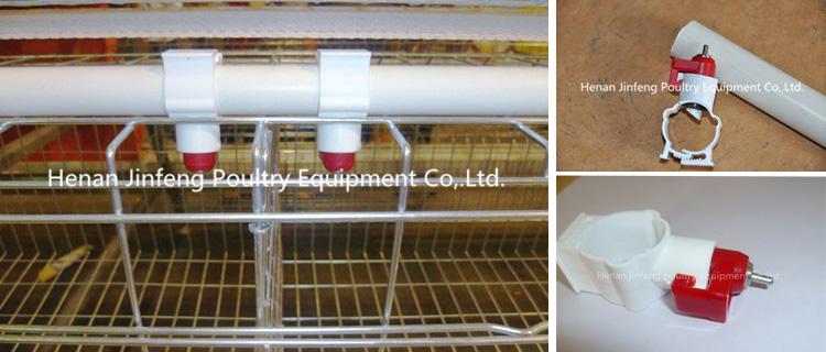 Design Chicken Egg Poultry Farm Equipment for Sale