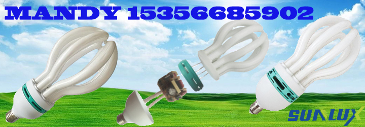 4u 5u Lotus 45W-200W Energy Saving Lamp