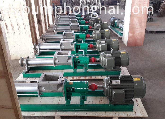 Stainless Steel Paste Water Pump