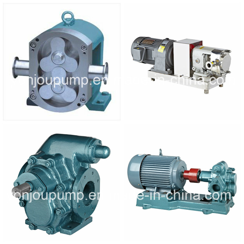 Stainless Steel High Pressure Rotary Gear Lobe Pump (Chocolate Honey Ice Cream Cosmetic)
