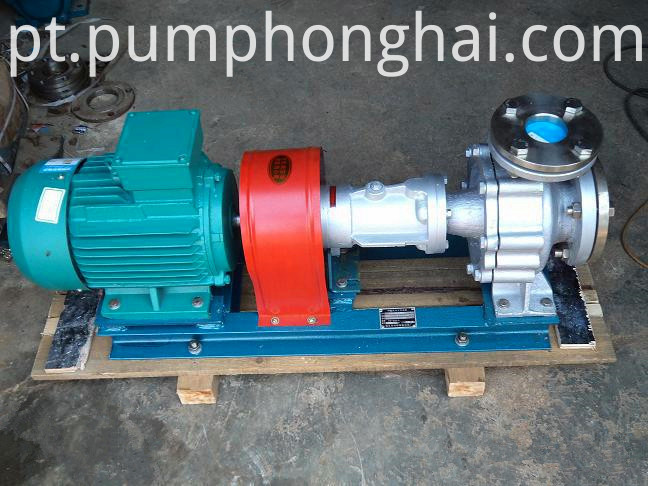 Stainless steel hot oil circulation pump