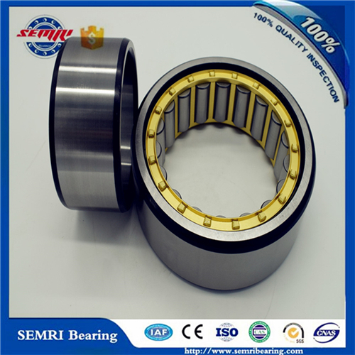 SKF/NSK Bearing/Roller Bearing/Cylindrical Roller Bearing (NU311M)