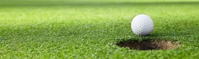 Ibdu Slow Release Fertilizer for Golf Course Green Grass