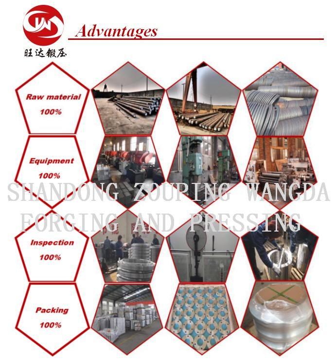 ASME, JIS, DIN, GOST Steel Pipe Flanges (WN, SO, TH, LJ, SW, Blind)