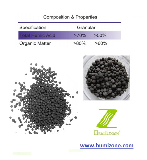 Organic Fertilizer: Humizone Humic Acid 70% Granular (HA70-G)