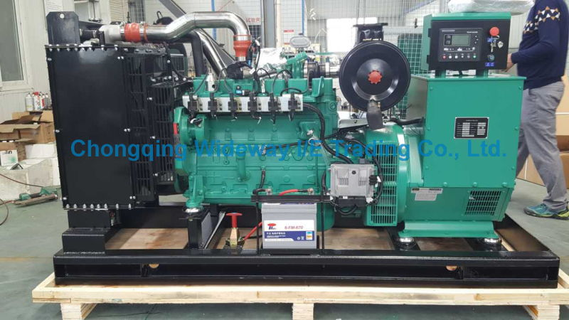 Lynt855g220kw High Quality Eapp Gas Generator Set