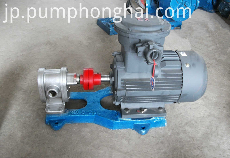 stainless steel material gear pump