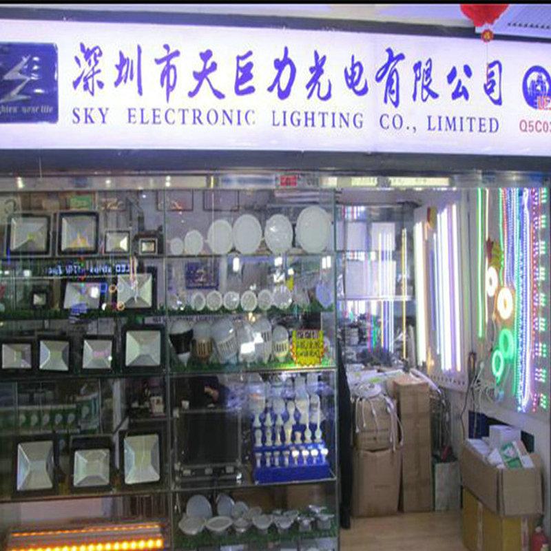 Aluminum Point Source Outdoor Decorative LED Flashlight (DC24V/AC220V)
