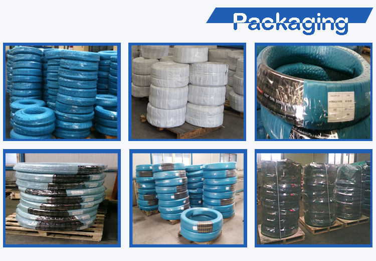 Rubber Hydraulic Hose SAE100 R8 From China