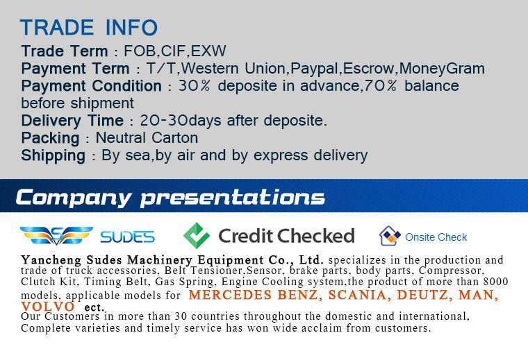 Skoda Octavia Spare Parts Clutch Plate 027141031s