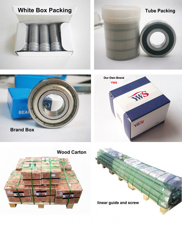 Plastic Deep Groove Ball Bearing