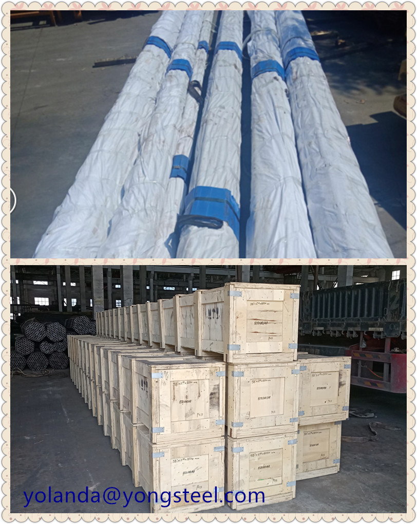 ASTM A213 T11 T12 T22 Alloy Steel Seamless Pipe for Pressure Purposes