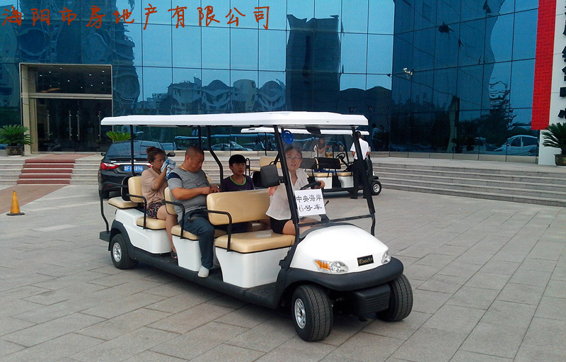 11 Passengers Electric Sightseeing Cart for Tourist Resort