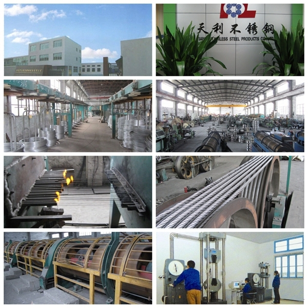 Ss316 1X19 Stainless Steel Rope