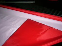 Professional Supplier of 230t Polyester Taffeta