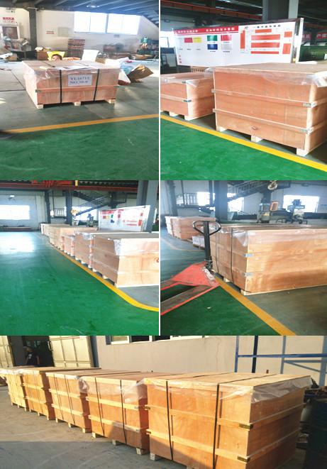 China Factory Wafer Dual Plate 300lbs Check Valve