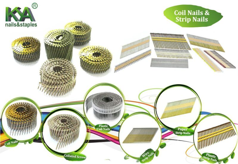 15 Degree Hot DIP Galvanized Pallet Nails