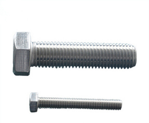 M4-M100 of Eyelet Bolts with Stainless Steel