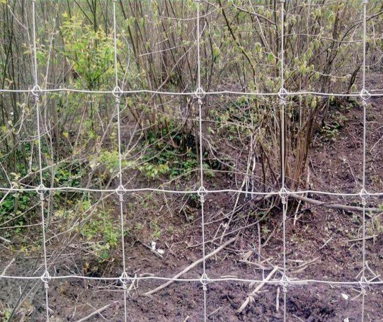 High Security Cattle Fence / Grassland Fence / Deer / Horse / Sheep