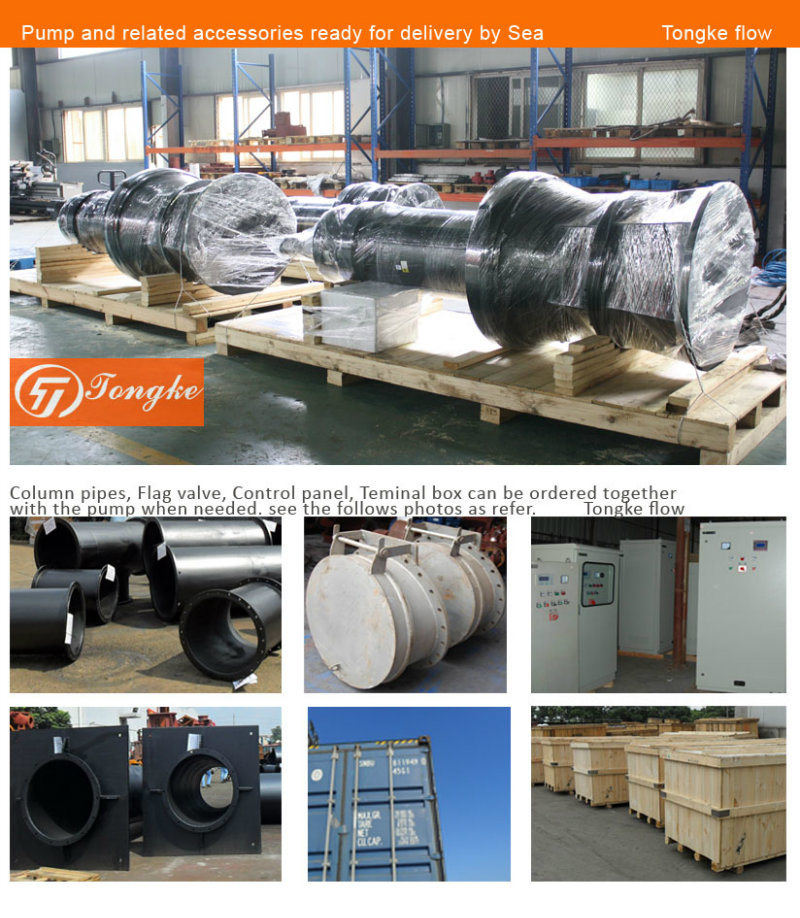 Non-Clog Vertical Mixed Flow Stainless Steel Submersible Pump