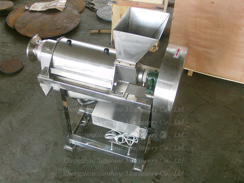 Small Apple Ginger Watermelon Production Fruit Juice Making Machine