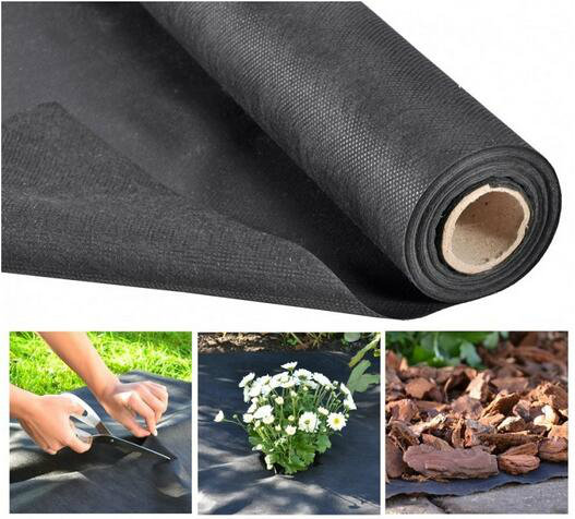 China Steady Quality PP Spunbonded Nonwoven Fabric for Agriculture Cover