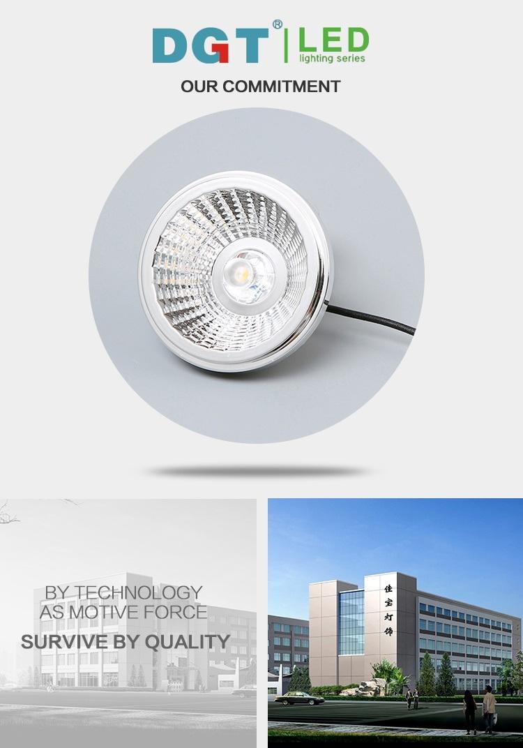 AR111 Optics Lens 12W LED COB Spotlight with Ce&RoHS