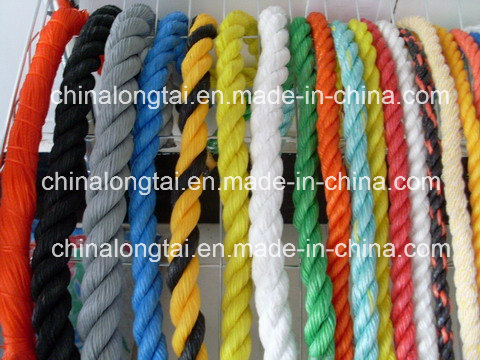 5mm Braided and Twisted PP Rope in Europen Market (SGS)