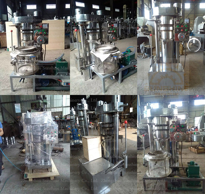 Hydraulic Coffee Bean Oil Extraction Machine Camellia Oil Press