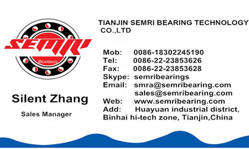 Big Size Chrome Steel High Precision Thrust Ball Bearing (517/930)