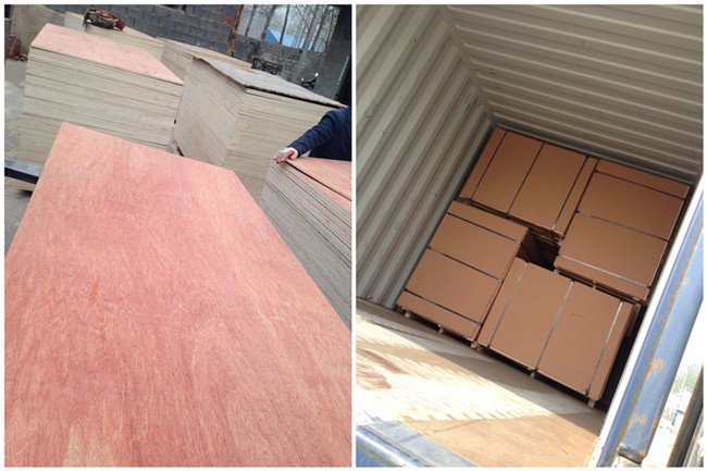 2mm - 25mm Mahogany Bintangor Commercial Plywood