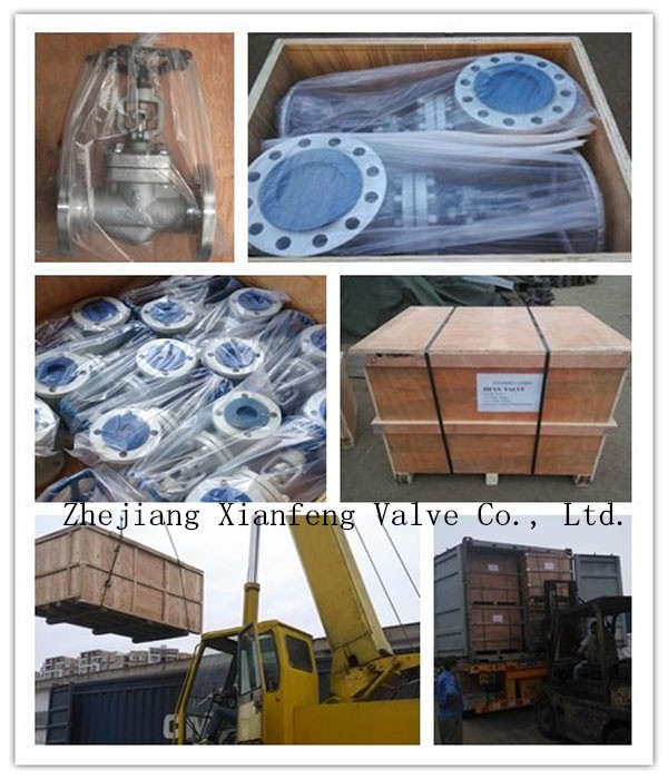 API6d Forged Steel Flange End Ball Valve