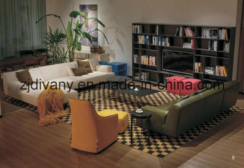 Home Furniture Fabric Sofa Furniture (D-79)