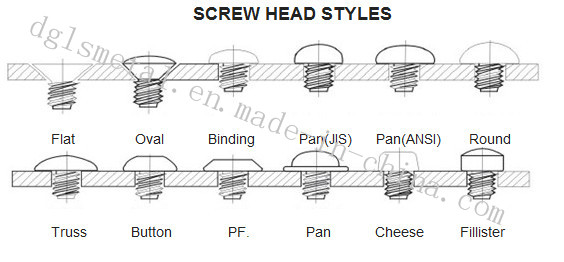 Anti-Theft Screw/Adjusting Screw/Self-Tapping Screw/Drywall Screw with High Quality