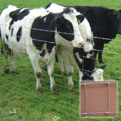 1.8m Height Horse Fencing for Cattle