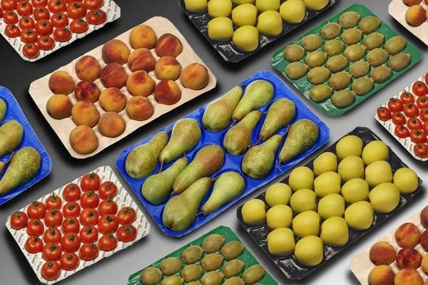 FDA Approval Best Prices PP Plastic 5lbs 10lbs Costco Fresh Fruit