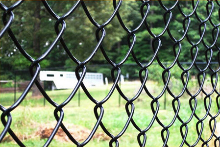 Chain Link Fencing PVC Coated SGS Certificated