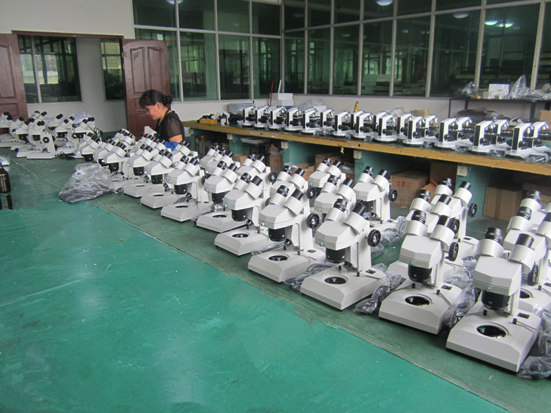 20-40X Stereo Microscope for Students Xtd-3b