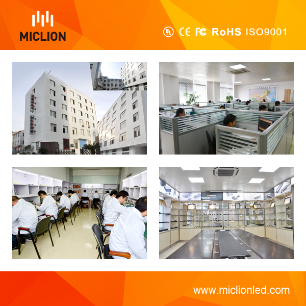 12W LED Emergency Panel with Ce RoHS