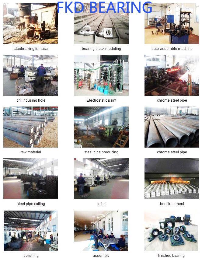 China Manufacturer Plummer Blocks / Pillow Block Bearing Units Ucp217