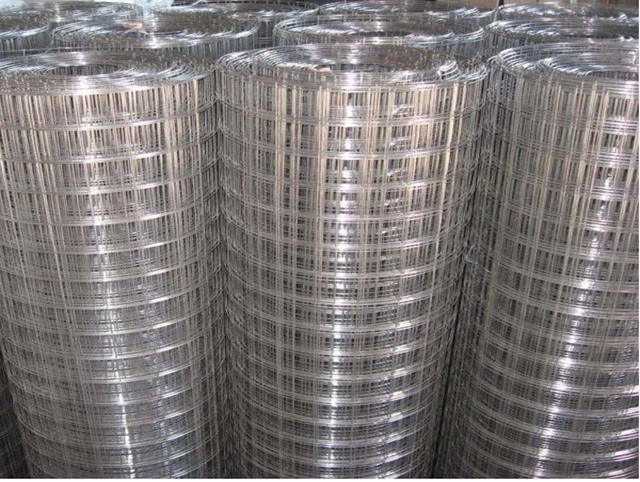 Welded Wire Mesh Galvanized Iron Wire