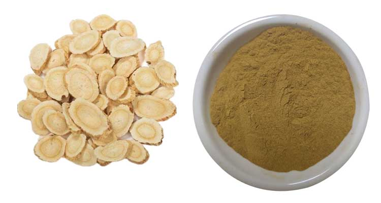 astragalus root extract