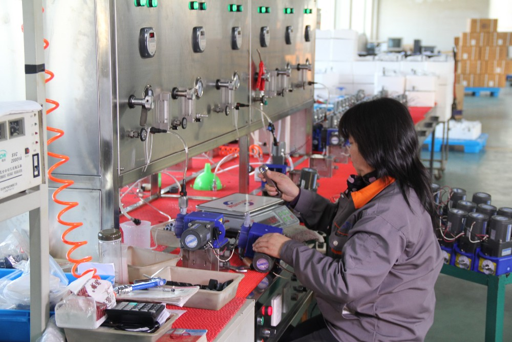 Solenoid dosing pump workshop