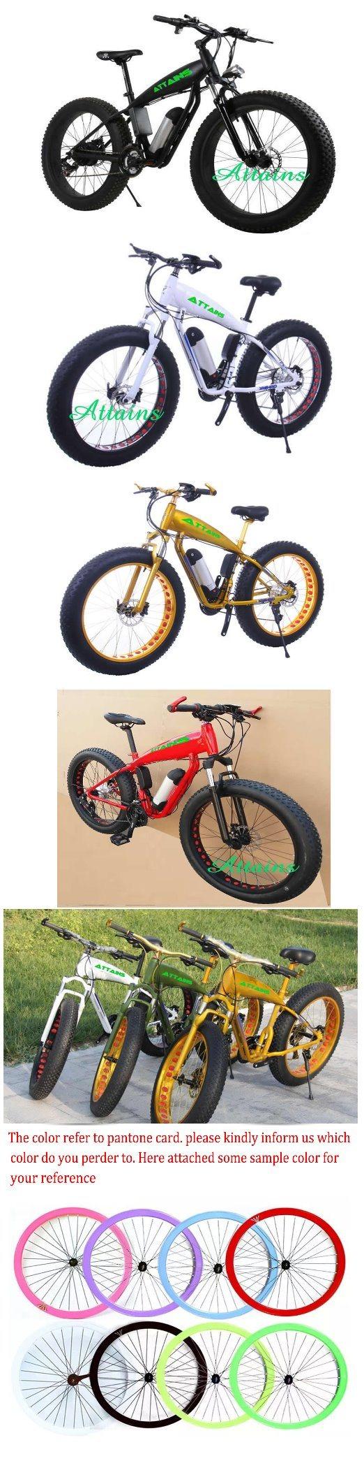 Latest Original Works Fat Tire Electric Dirt Bike