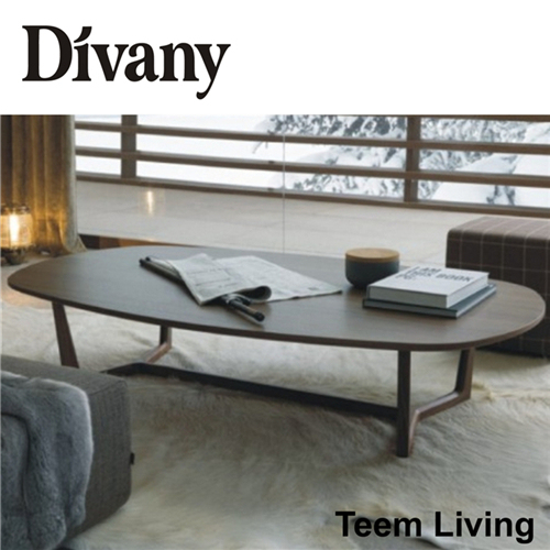 Living Room Furniture Wood Stainless Steel Coffee Table (T-57D)