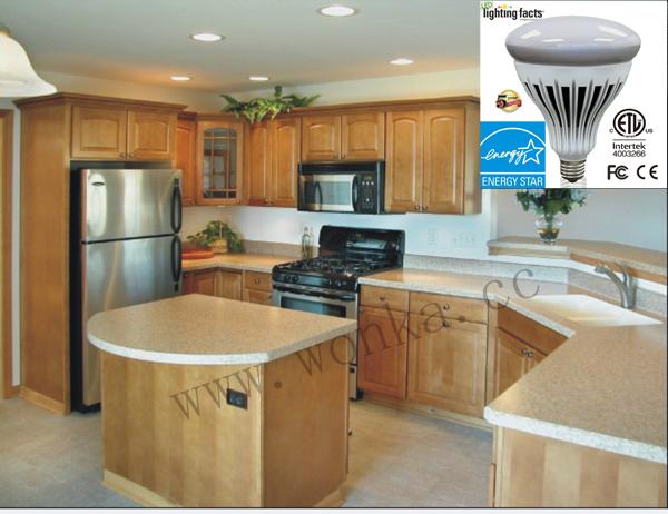 Energy Star Fully Dimmable R40/Br40 of LED Light Bulb