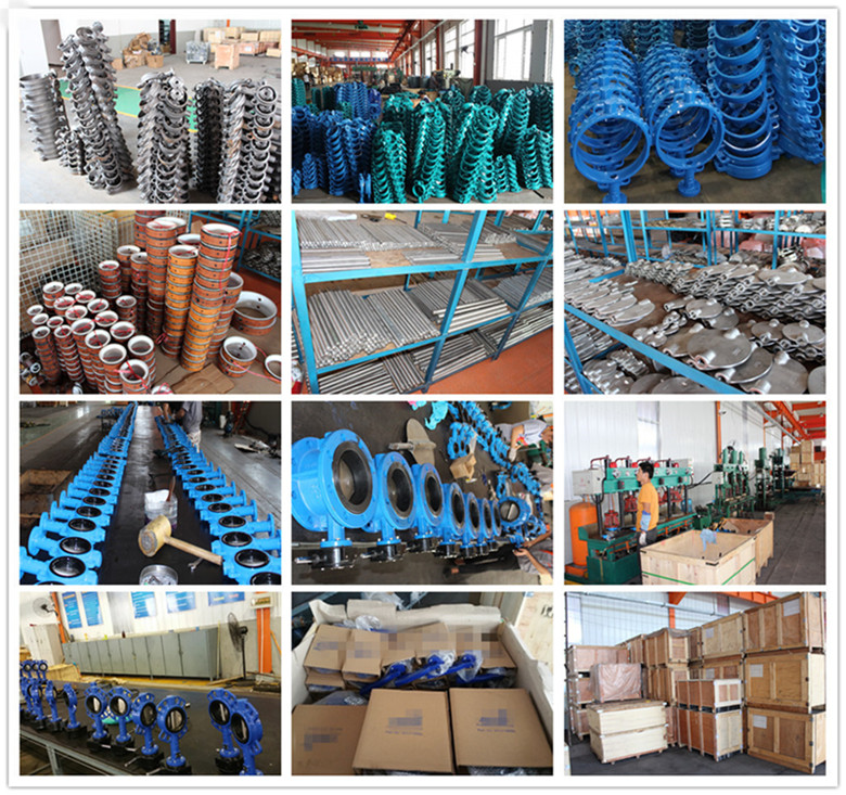 China Supplier of Ductile Iron Butterfly Valve
